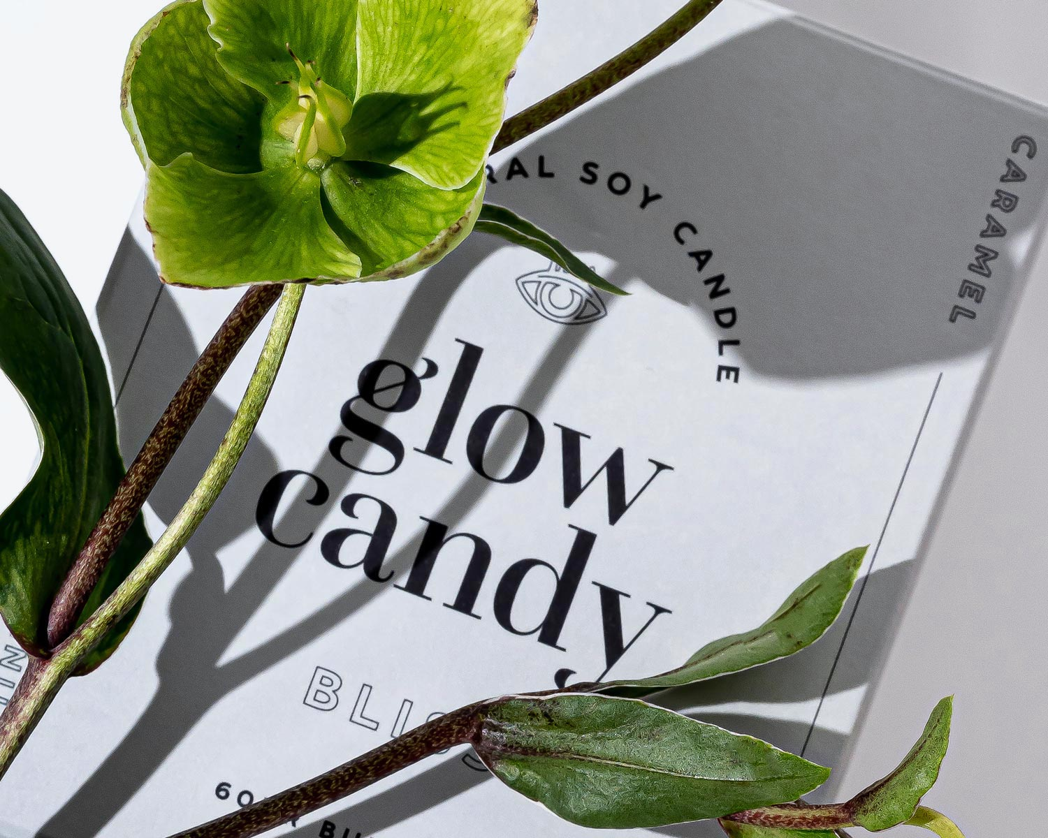 A close up of the front of the packaging for Glow Candy's 'Bliss' candle.
