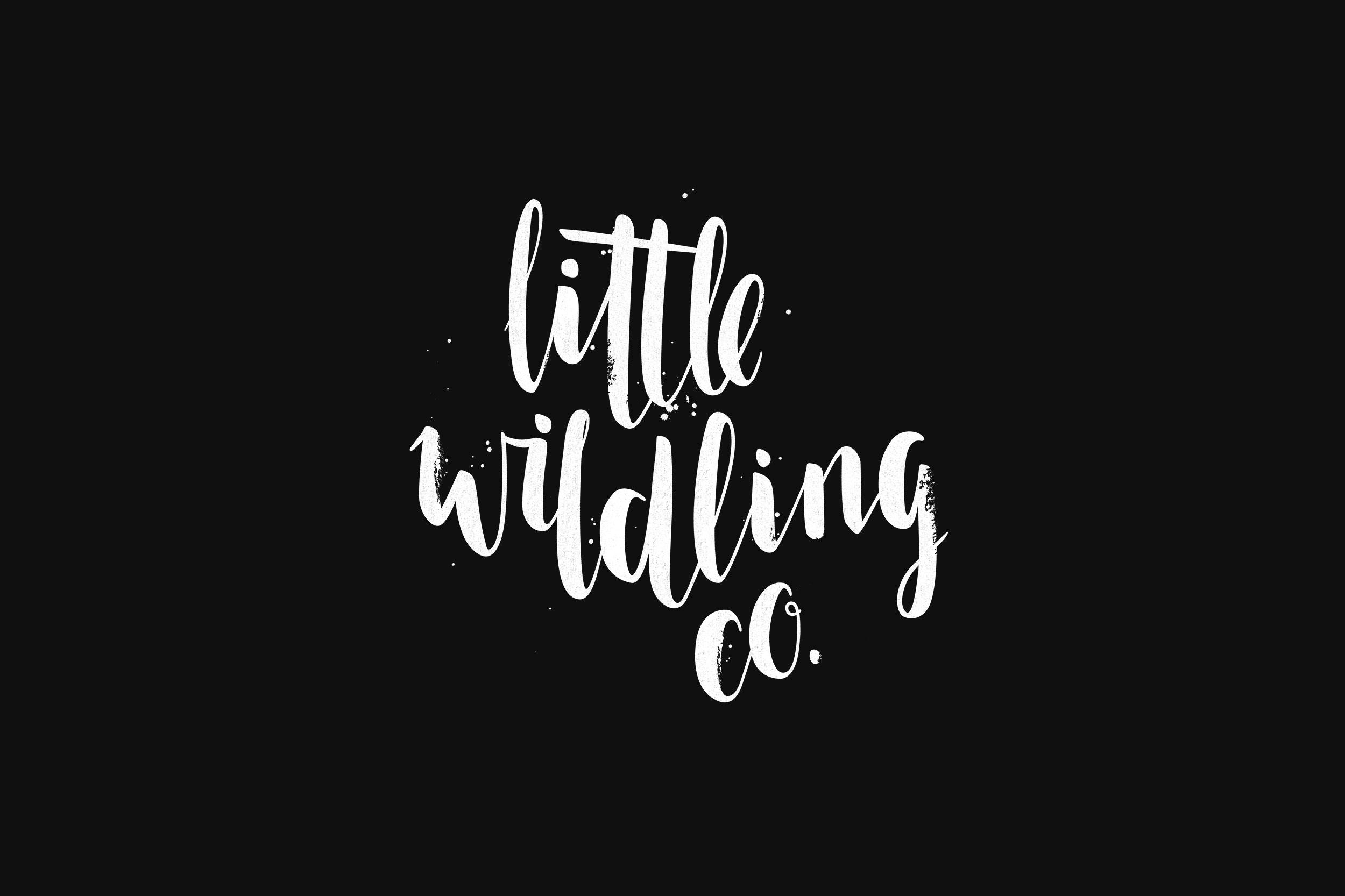 Little Wildling Co Brand Logo